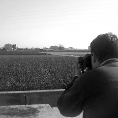 Observatorio de paisajes en la Comunitat Valenciana 2008